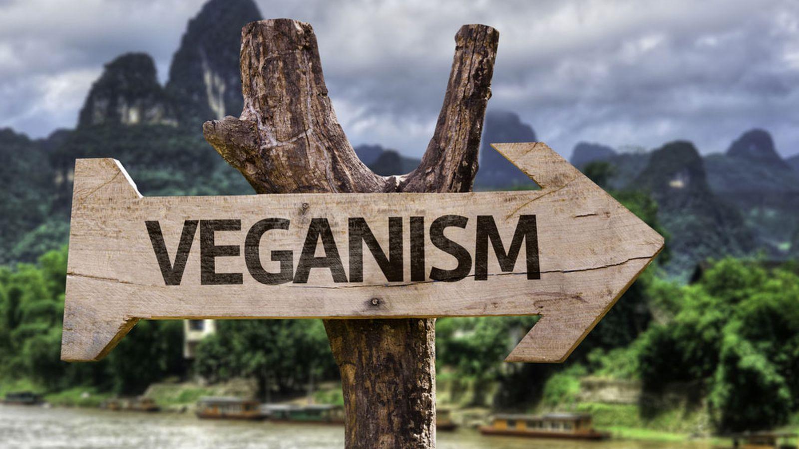 Le motivazioni del veganismo