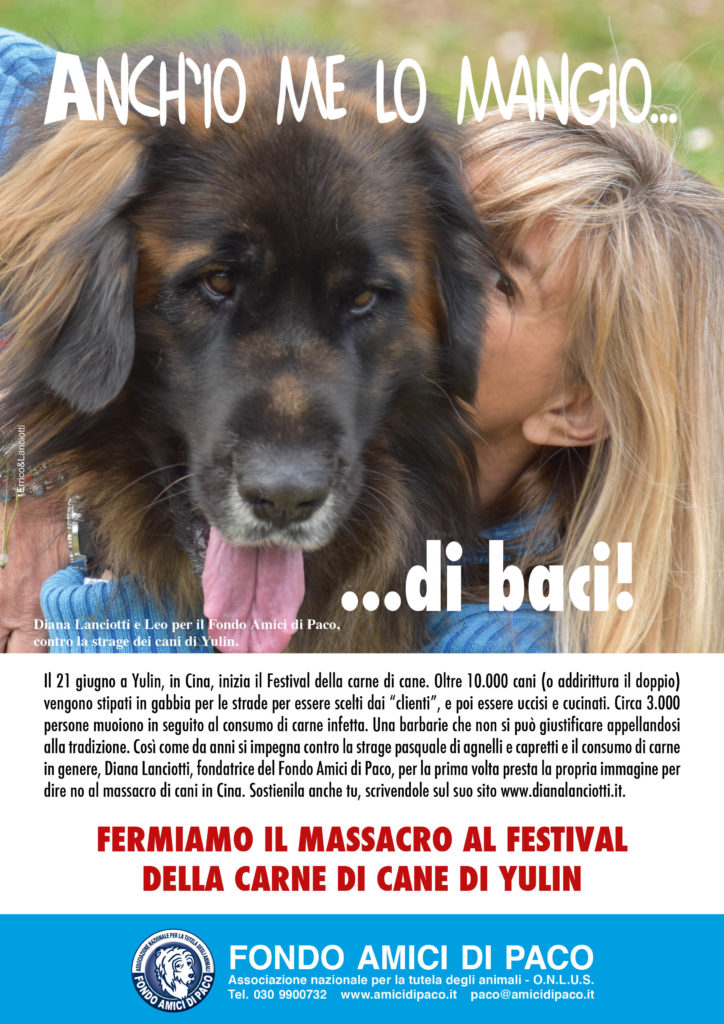 CampagnaAnch27iomelomangio 724x1024 - Festival della carne di YULIN: FERMIAMO LA STRAGE! - news-