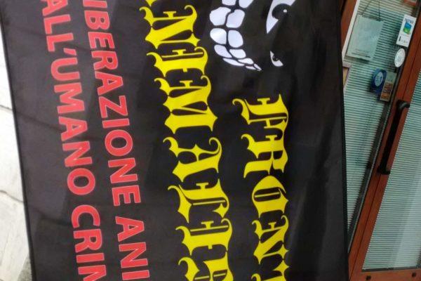 P 20180815 144607 600x400 - Pinzolo (TN) 15 agosto 2018 - Politica Assassina - Manifestazione di protesta contro la legge abbatti orsi e lupi - news-