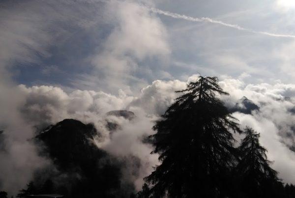 P 20180825 103629 600x403 - Passeggiata al rifugio Albasini in località Malghet - Aut - rubrica-il-trentino-visto-da-unanimalista-