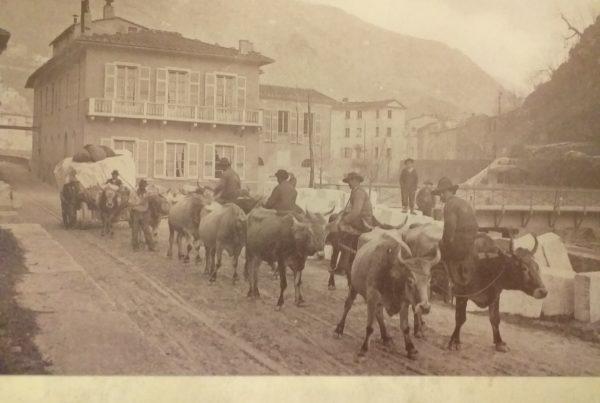 20190628 184851 600x403 - Lo sfruttamento dei buoi nella distruzione delle Alpi Apuane (ovvero: una Davide vale una vita o una montagna)?