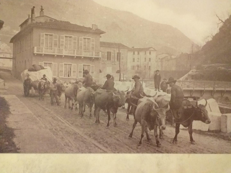Lo sfruttamento dei buoi nella distruzione delle Alpi Apuane (ovvero: una Davide vale una vita o una montagna)?
