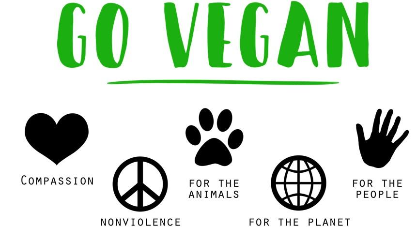 Il veganismo tra idealismo animalista, salutismo, ambientalismo e …carne vegetale