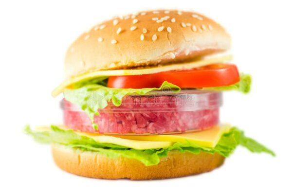 hamburger con carne una capsula di petri che rappresenta vitro 109621322 600x403 - Il futuro della carne è cruelty free (la tecnologia al servizio degli animali) - editoriali-