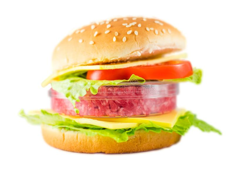 hamburger con carne una capsula di petri che rappresenta vitro 109621322 - Il futuro della carne è cruelty free (la tecnologia al servizio degli animali) - editoriali-